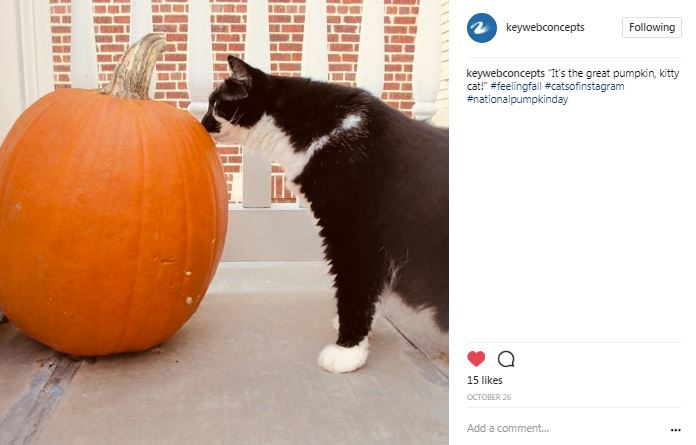 Instagram picture from #feelingfall social media contest, Key Web Concepts, Richmond VA